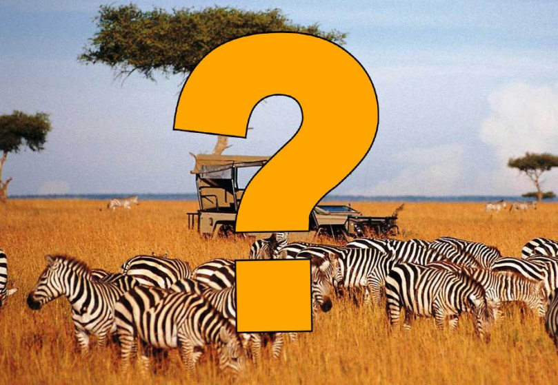 Tanzania Safari Mojhi