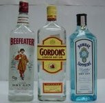 Types of Gin