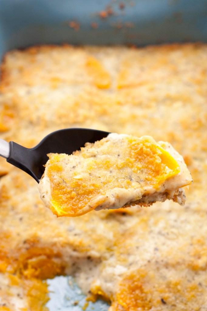 Butternut Squash Gratin with Pesto - Cheese and pesto marry together in this perfect dish to jazz up any thanksgiving dinner. This gratin is sure to please the entire family!   chickandhercheese.com
