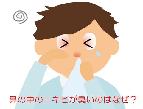 鼻の中 ニキビ 臭い