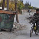 In Syria, weather conditions and rising poverty force families to cut age-old trees to keep children warm
