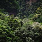 yangshuo-guangxi-020