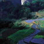 zhangjiajie-park-000