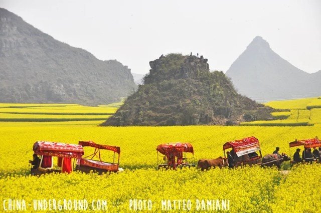 Luoping-006