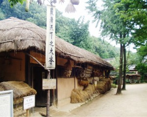 Korean Folk Village 01