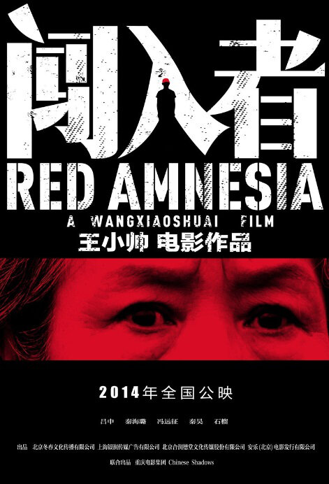 Poster do filme Amnésia (2014)