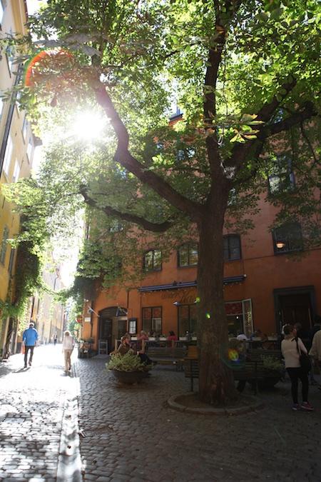 trip-to-sweden-7