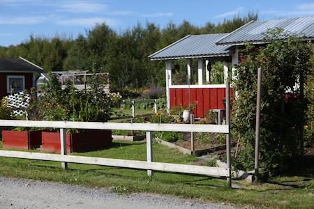 swedish_community_garden-1