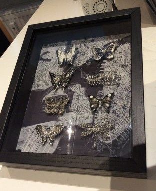 black white jewelled moth shadowboxes Suzanne Forbes 2016
