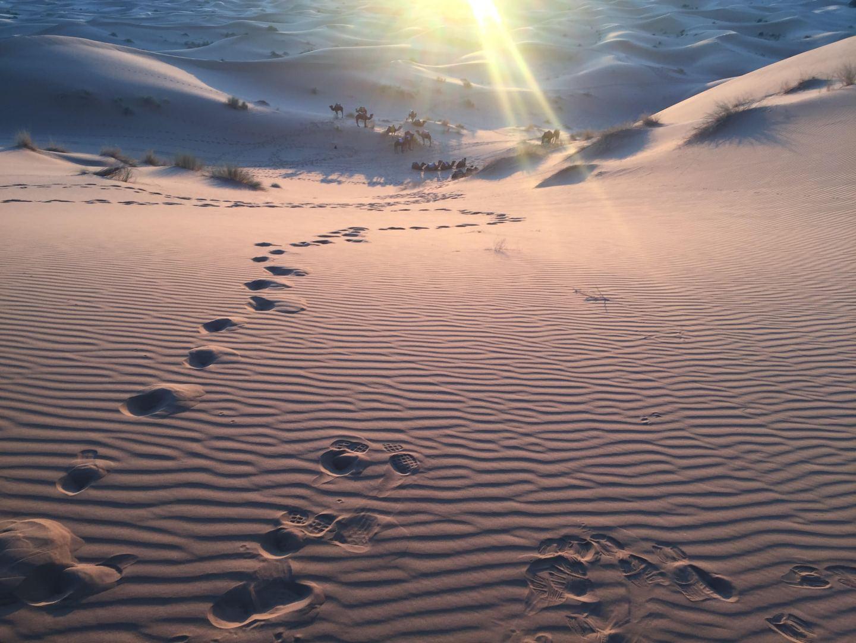 "7 experiências imperdíveis ""Prá lá de Marrakesh"""