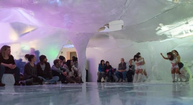 Antarctica-266