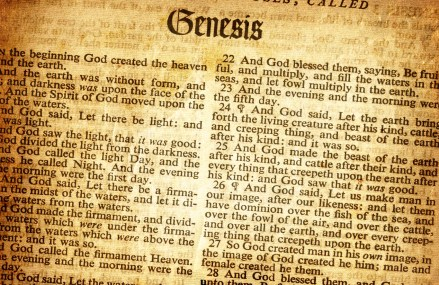 The Importance of Genesis