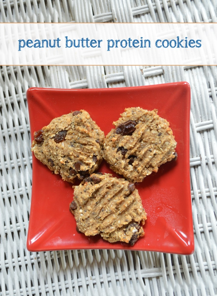 Recipe: Peanut Butter Protein Cookies | Christine Robyn