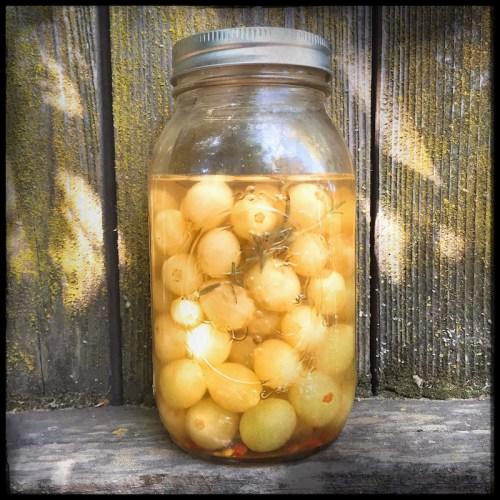 picles-uva