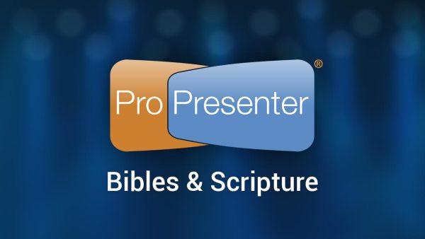 Pro6_bibles