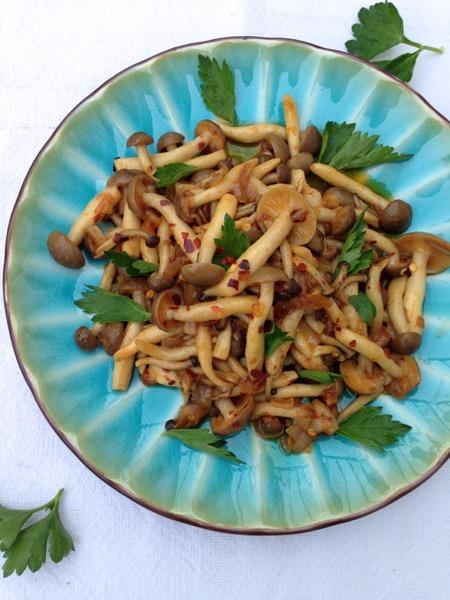 Mushroom White Wine Sauce