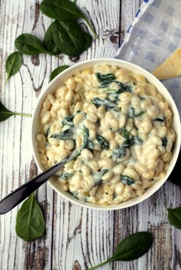 One for the fancy cheese lovers! Cambozola (blue brie) makes a creamy, delicious one pot stovetop mac and cheese!