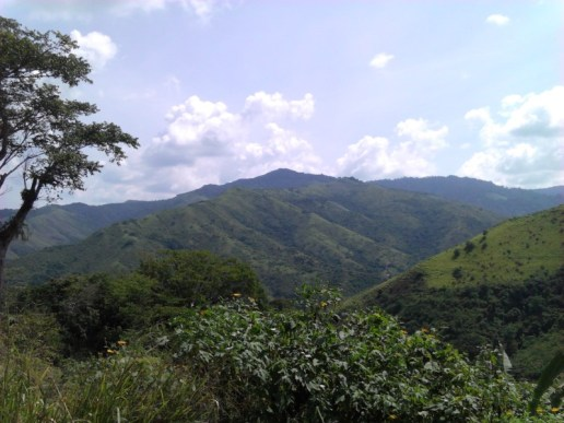 Valles del Tuy