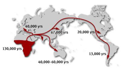 migrazioni-1