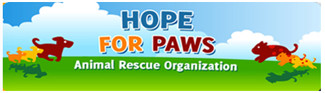 hope for paws cindy hallas