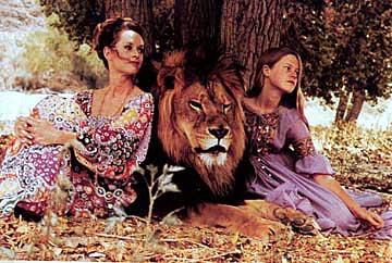 lioncolor.jpg