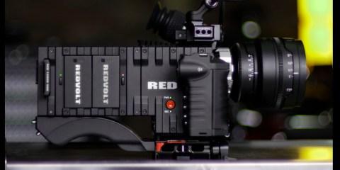 RED_Dutch