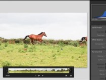 Adobe Photoshop Lightroom 4 beta for Windows and Mac FREE Download: