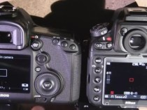 Nikon D800 Vs Canon 5D MKIII audio Firmware Features:
