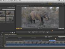DSLR Editing Overview and Workflow Basics in Adobe Premiere Pro CC: