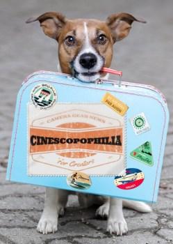 Cinescopophilia Dog