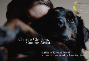 Charlie Chicken, Canine Artist 1080p Shot on Sony FS7 + Slog 3 + S Gamut.Cine Filmconvert + Grain Camera Nerd Version