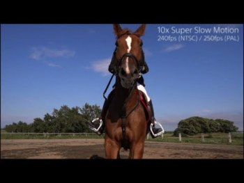 Sony RX100 IV & RX10 II – 240fps Super Slow Motion Horse Riding Multi-angle