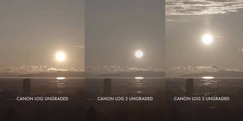 C300 MKII Update: Side-by-Side 4K Comparisons of Canon Log, Canon Log 2 and Canon Log 3