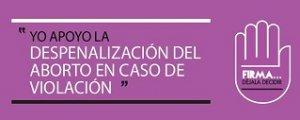 """23. Perú: """"Déjala decidir"""", campaña para despenalizar el aborto por violación sexual"""