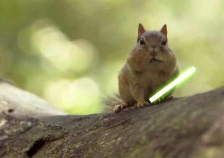 jedi chipmunks 3