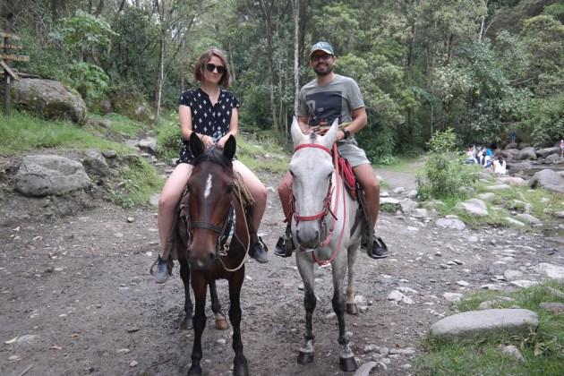 Parque Cocora Colombia