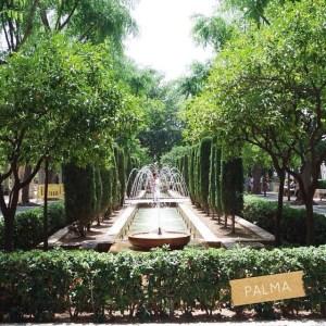 Le jardin de la Cathdrale de Palma est  fairehellip