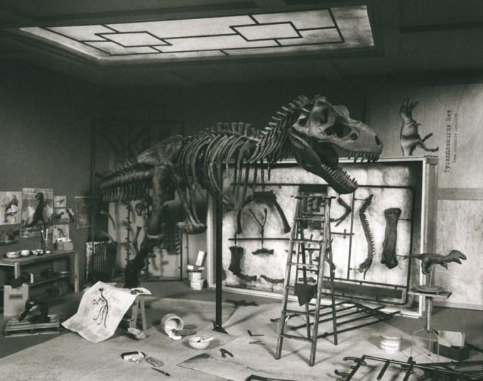 Lori Nix, T-Rex