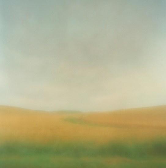 Christopher Harris, Field In Rain, Whitman County