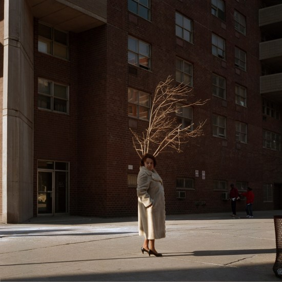 Janet Delaney, Woman with Tree