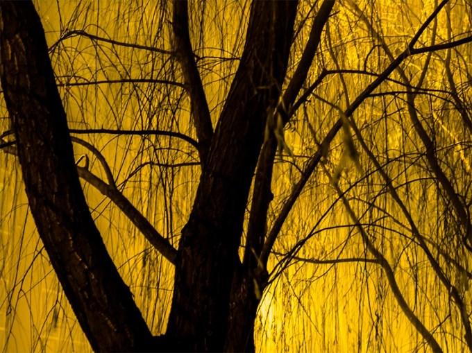 Steve Giovinco, Untitled (Beijing #5707)