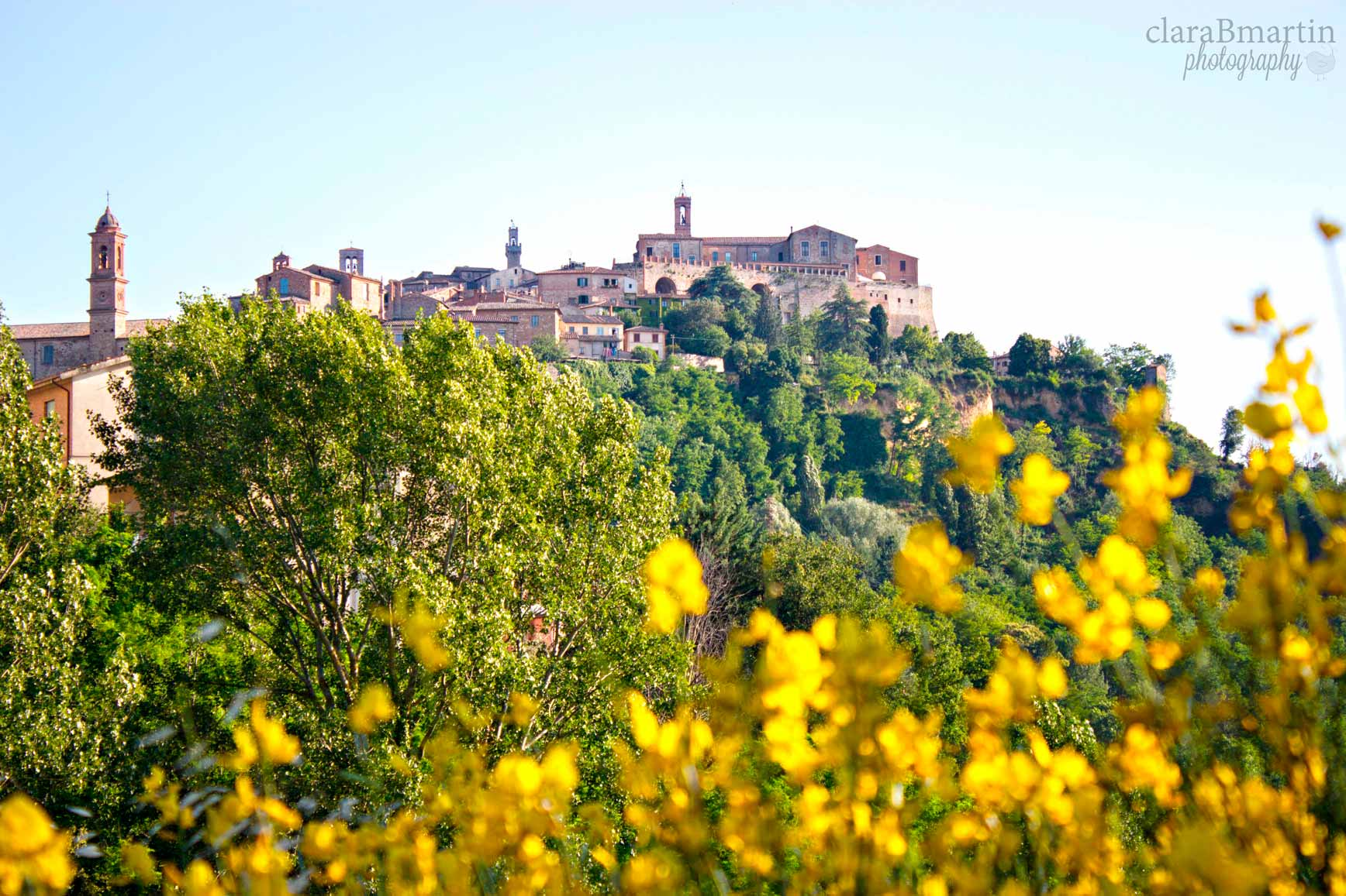 Toscana_claraBmartin02