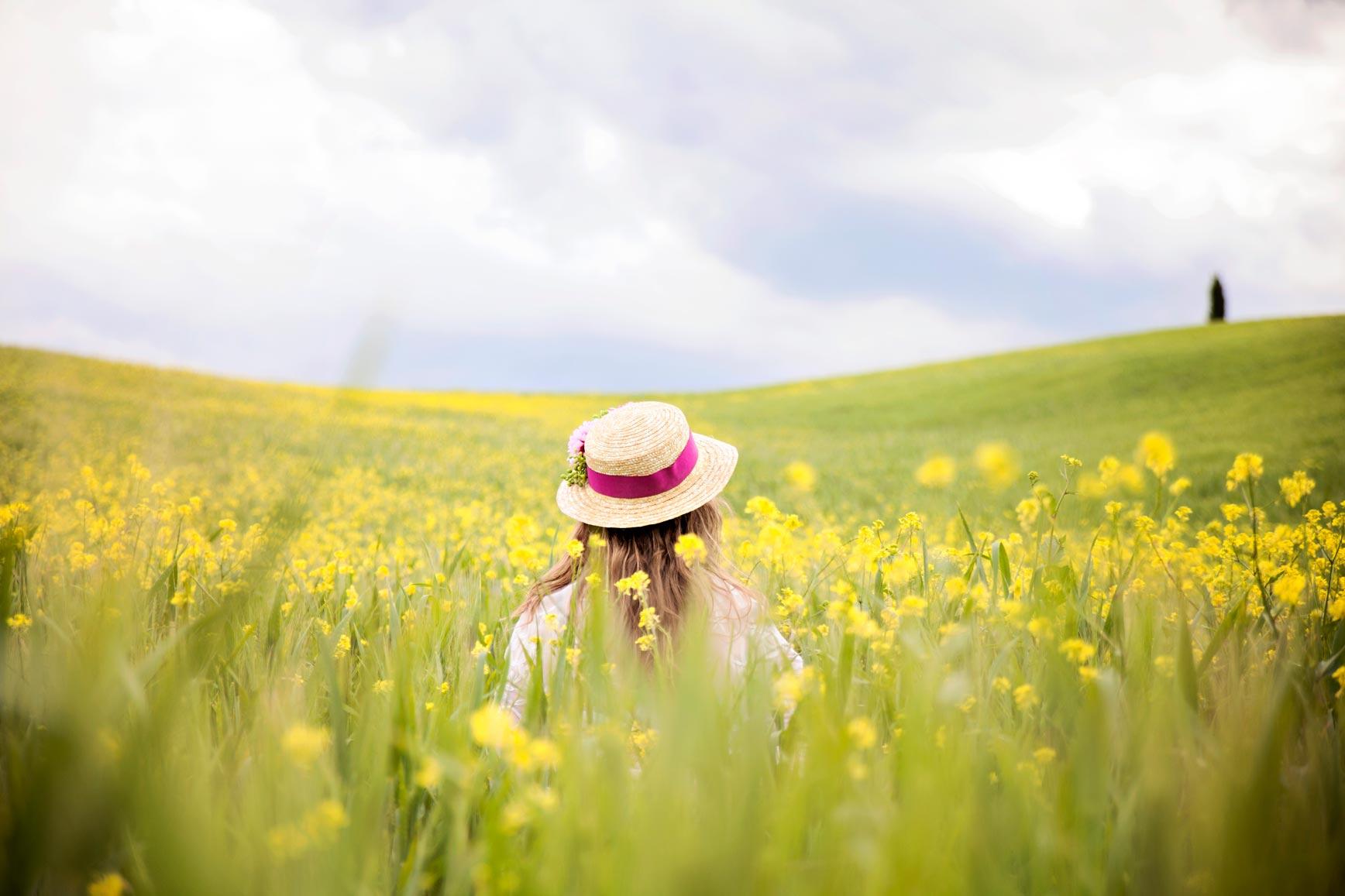 Campos de flores amarillas-claraBmartin-05