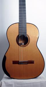 Scotts_guitar