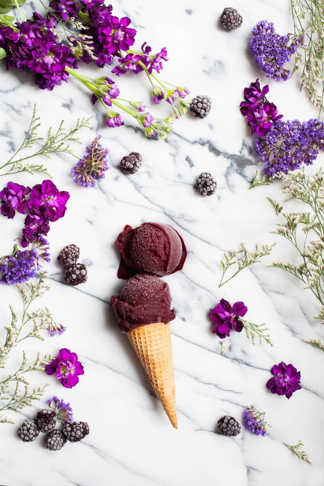 Blackberry Cabernet Sorbet – Clean Eating with a Dirty Mind