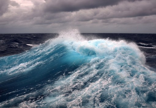 Oceans are getting Sicker and making us Sicker Too
