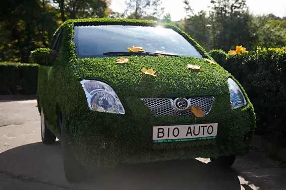bioauto_green_grass