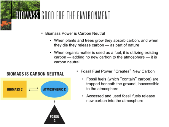 Carbon-neutral argument for biomass (usabiomass.org)