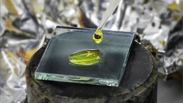 NREL Senior Scientist Kai Zhu applies a perovskite precursor solution to make a perovskite film. Image Credit: Dennis Schroeder