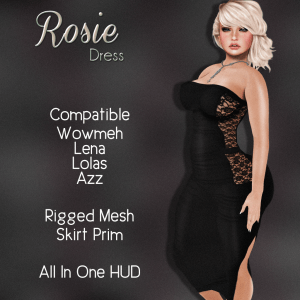 _FY_ Rosie Dress AD GOING BUST
